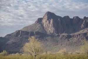 Safford Peak, Saguaro National Park