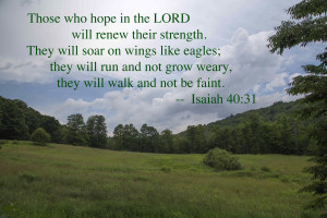Those who hope in the LORD.... (image by Robert A. Jonas)