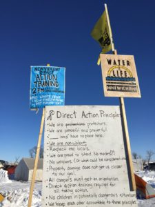 direct-action-principles-w-flags
