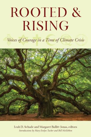 Rooted and Rising Cover